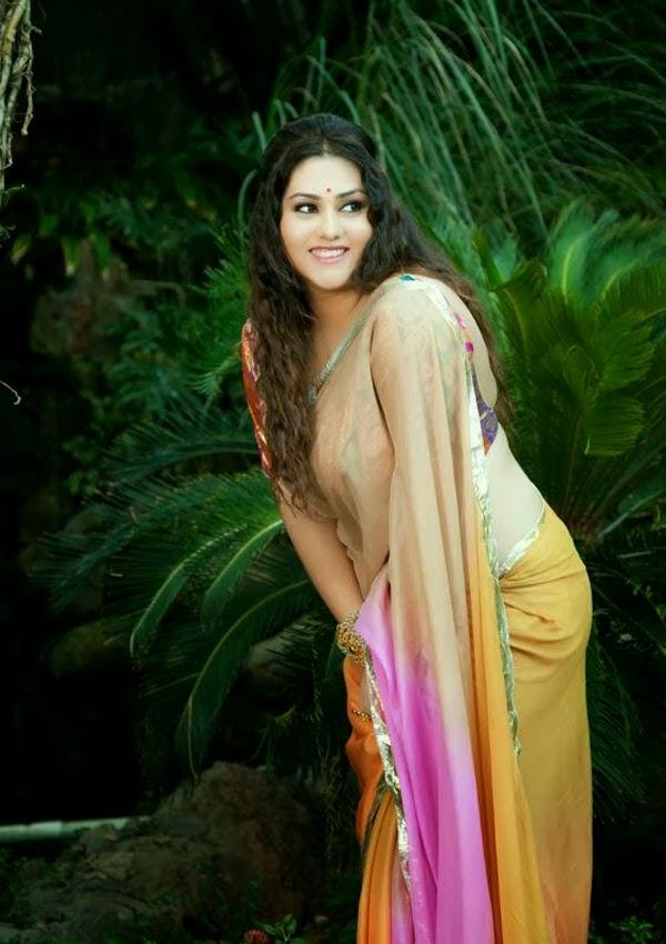 805bcbf2ac512a Namitha Hot In Backless Saree Blouse Photos South Masala Actress ...
