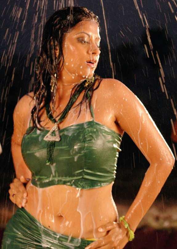 South Indian Actress Wet Saree Hot Sindhu Tolani Navel