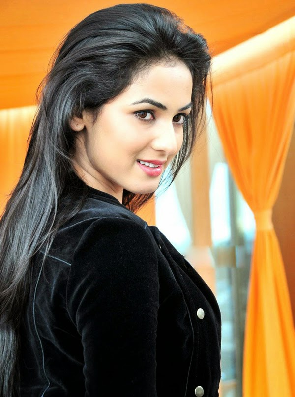 Sonal Chauhan Sizzling Hot Photos Welcomenri