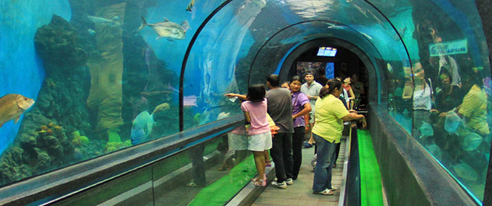 Fun Places For Kids In Bangalore