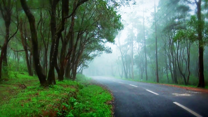 Ponmudi Hill station in Kerala | Welcomenri