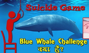 क्या है ब्लू व्हेल ऑनलाइन खेल | What is Blue Whale Suicide Challenge Game
